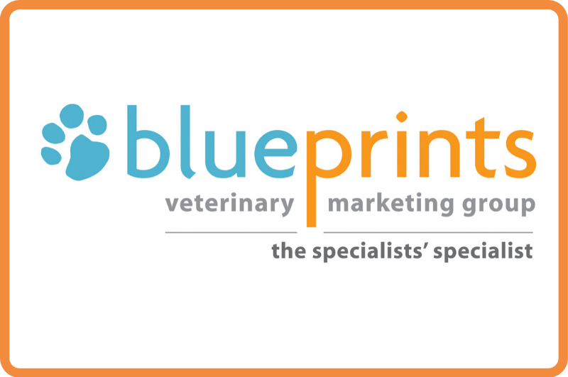 Image: BluePrints Veterinary Marketing Group Announces Organizational Changes  to Meet Growing Demand for Strategic Marketing and Management Services