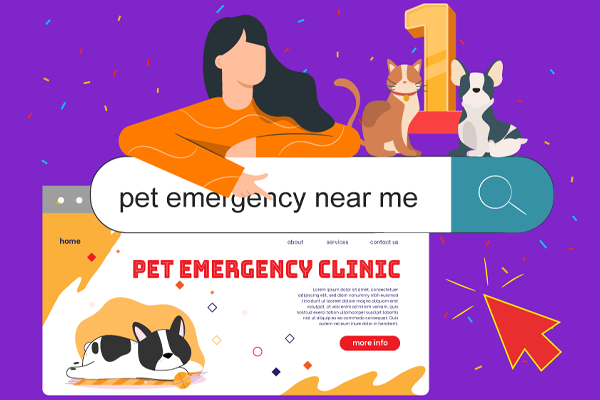 How to Get Your Veterinary Practice to Rank on Page 1 of Google